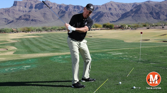 M2: WEIGHT OF THE CLUBHEAD