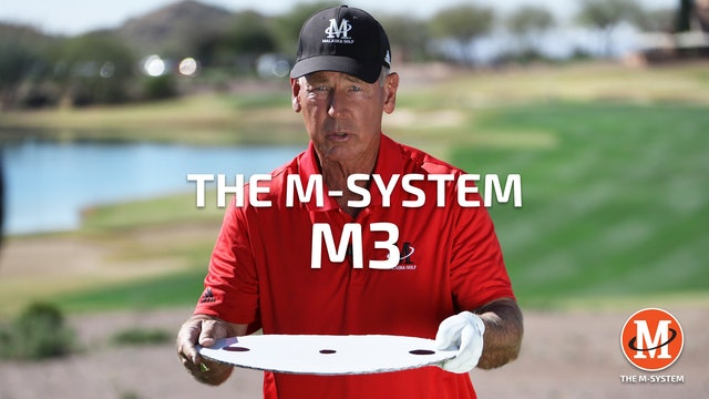 M-SYSTEM: M3 - HOW THE BODY WORKS