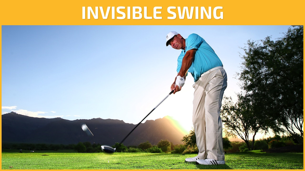 INVISIBLE SWING