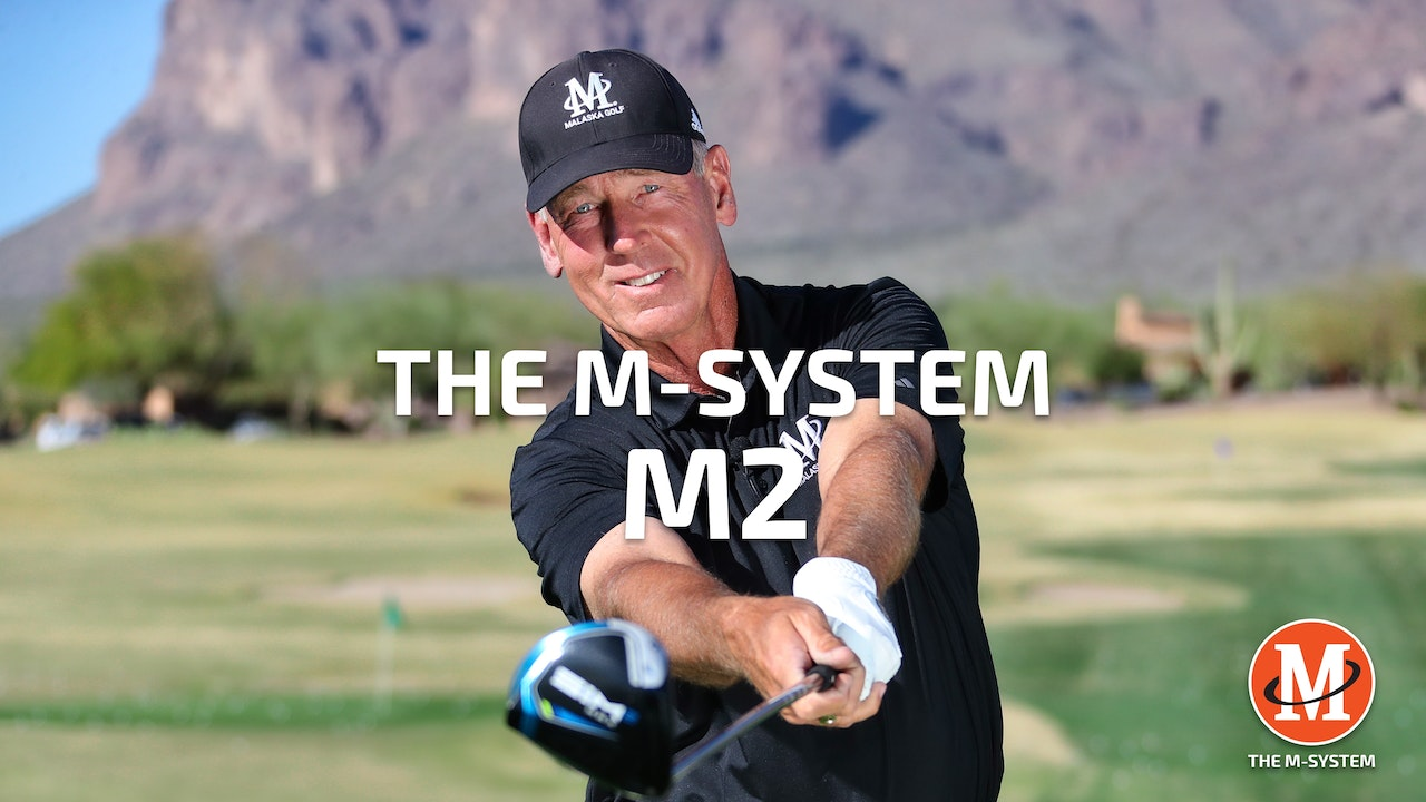 M-SYSTEM: M2 - THE LEVER SYSTEM