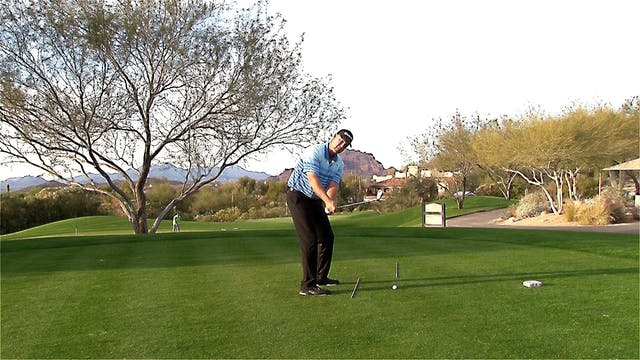 COMMENTS ON THE BACKSWING