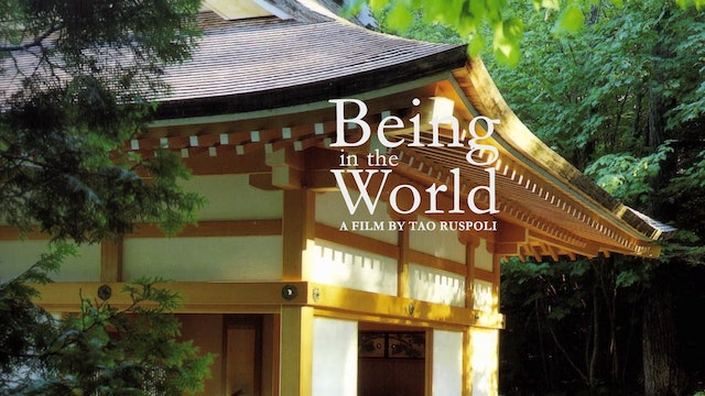 Being in the World - Buy