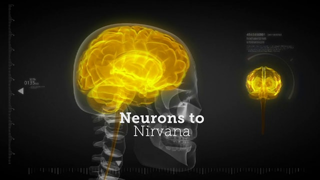Neurons to Nirvana - Extras Deluxe