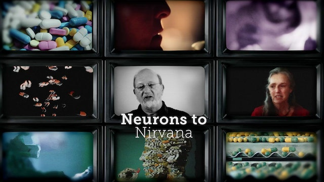 Neurons to Nirvana - Buy