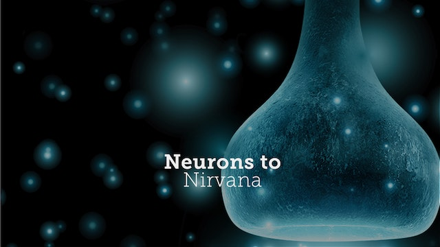 Neurons to Nirvana - Deluxe Package