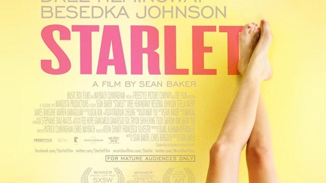 Starlet - Buy