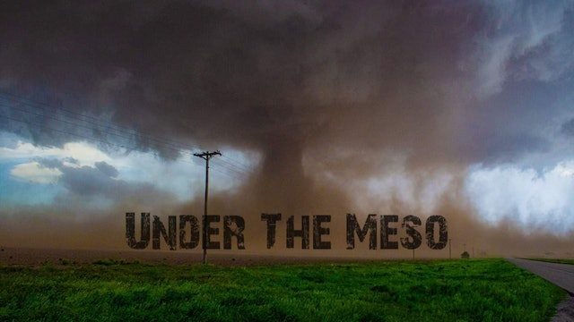 Under The Meso