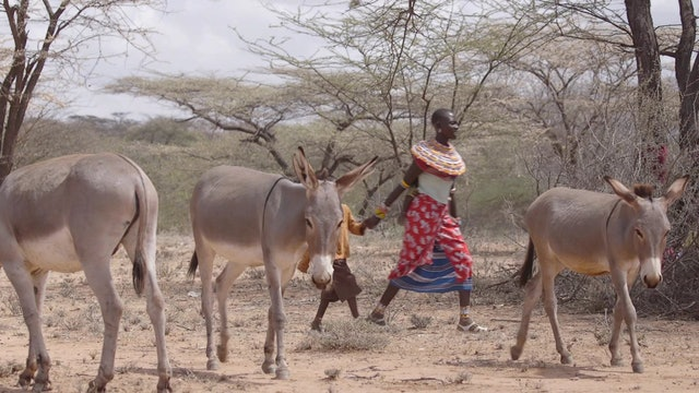 The Call to Kenya