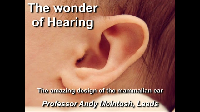 Andy McIntosh - Wonder of the Human Ear