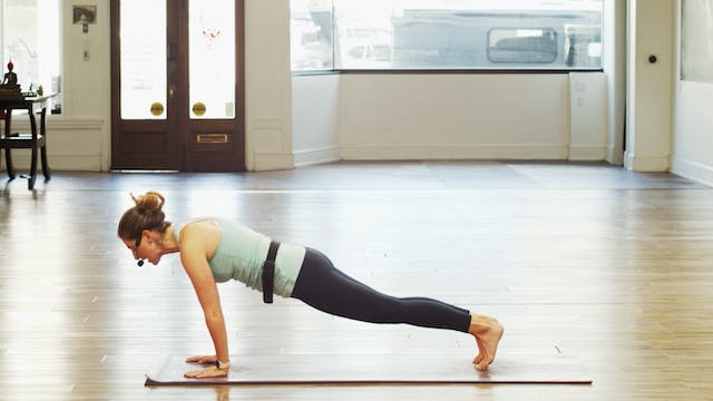Chaturanga and UpDog | Megan