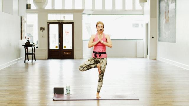 Yoga Basics Express- Alignment | Megan