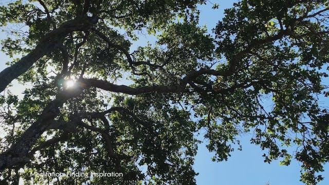 Meditation | Gavin | Finding Inspiration