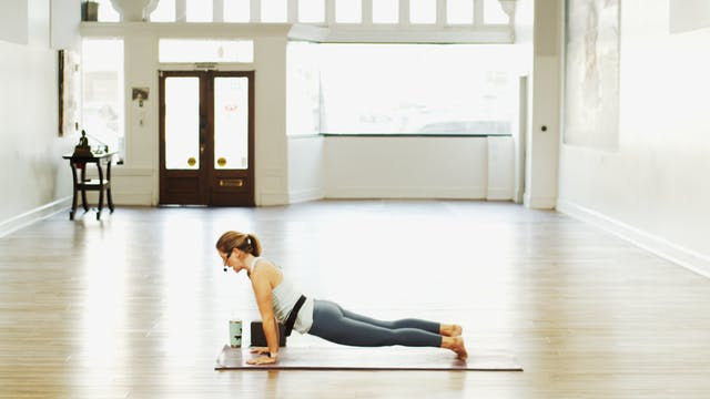 Gentle Yoga Live | Megan | 1/11