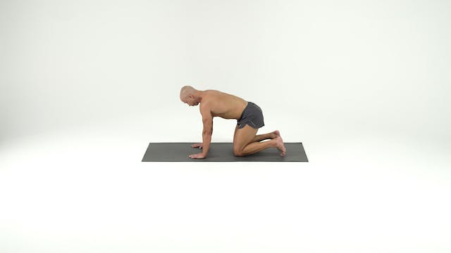 Stack 2- Back Lying with Lunging
