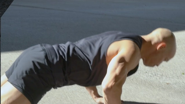 Superset (DE): Dynamic Push Up with T-arm Crawl