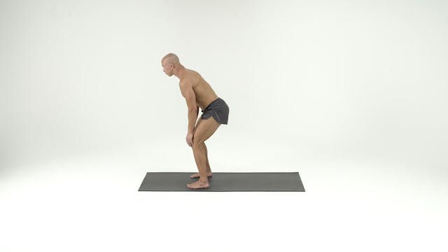 Stack 3- Front Lying with Step Ups