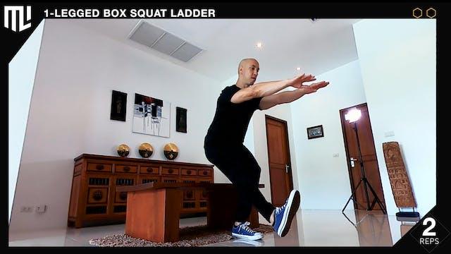 7.5 Minute LADDER 1-legged Box Squats