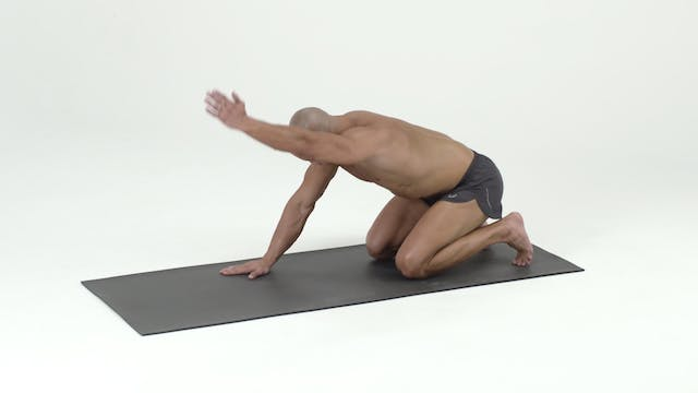 Stack 2- Side Lying with Single Kneeling