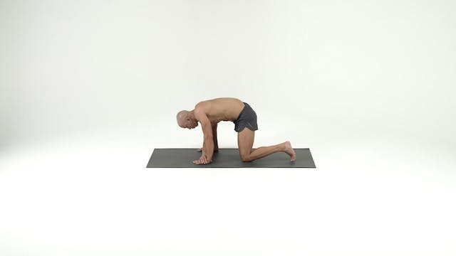 Stack 2- Front Lying with Step Ups