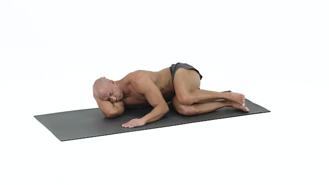 Rehab- Side Lying Exercises (double stack)
