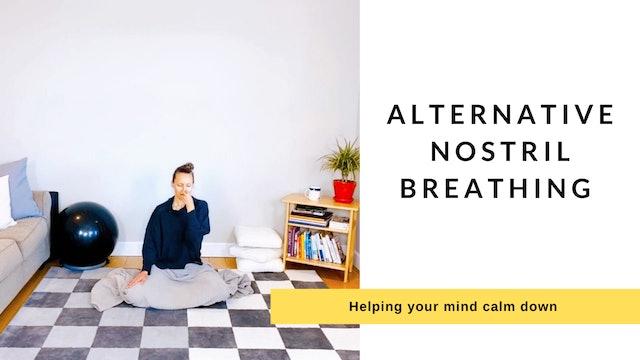 Alternative Nostril Breathing