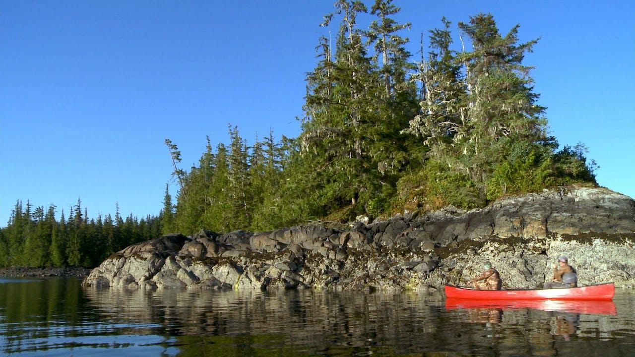 S5-E16: Up at the Cabin: P.O.W. Island Black Bear
