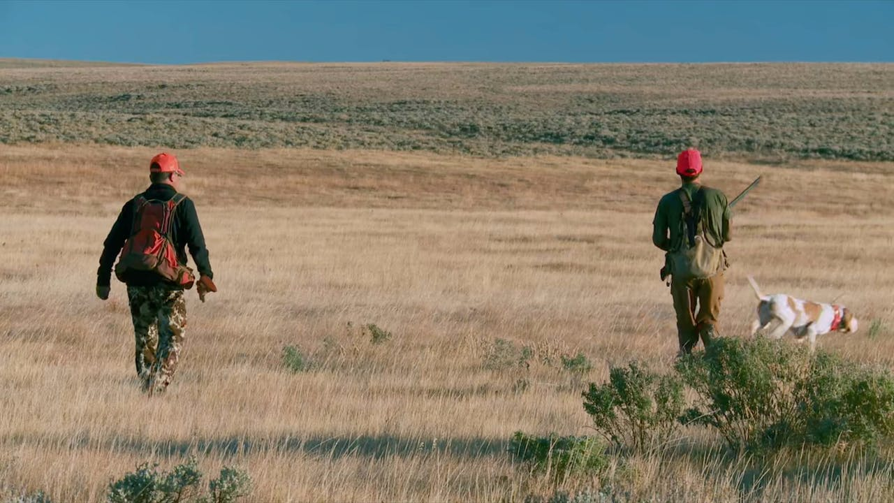 S7-E05: Wyoming Sage Grouse