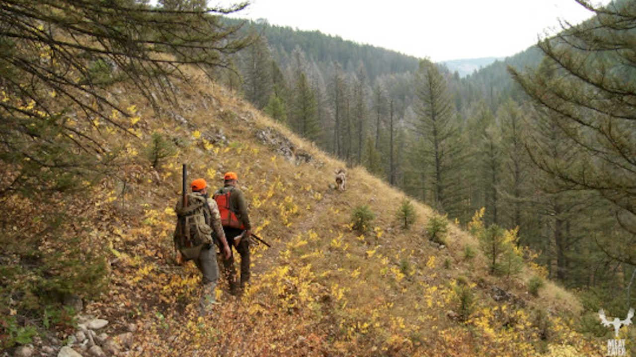 VOLUME 4, EPISODE 4: STRAIGHT FLUSH, MONTANA MOUNTAIN GROUSE