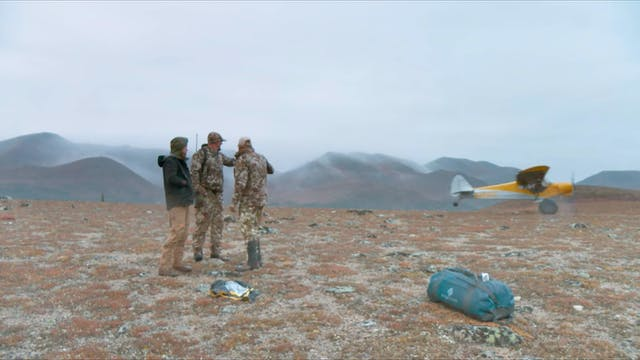 S7-E03: Alaska Moose Part 2