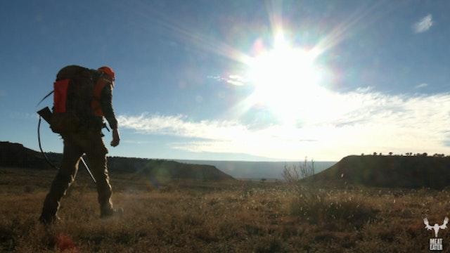 BIG BUCK DREAMS: COLORADO MULE DEER
