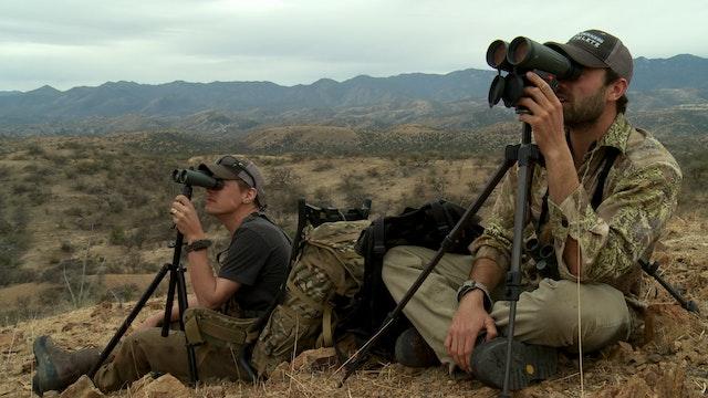 Skunk Pig: Mexico Javelina & Coyote