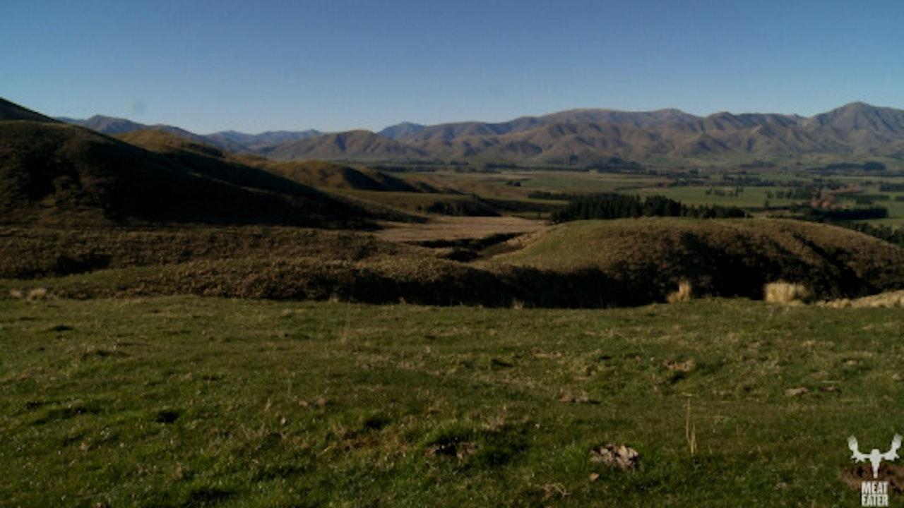 VOLUME 3, EPISODE 5: BUSH PIG, NEW ZEALAND WILD BOAR