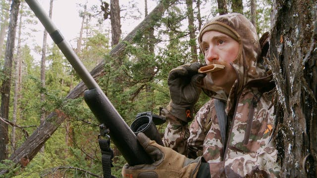 S7-E07: Prince of Wales: Sitka Blacktail Deer Part 2