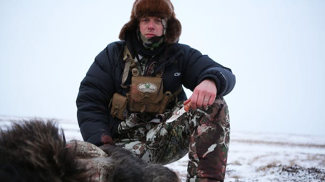 S5-E11: The Coldest Hunt: Nunivak Island Muskox