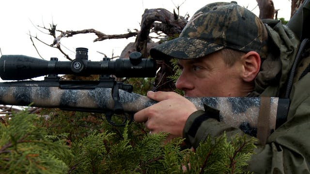 S1-E01: Into the Clouds: Sitka Blacktail Deer
