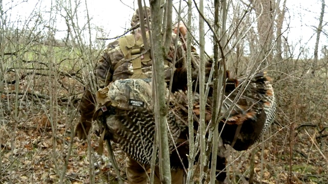 Surf n Turk: Wisconsin Turkey and Carp