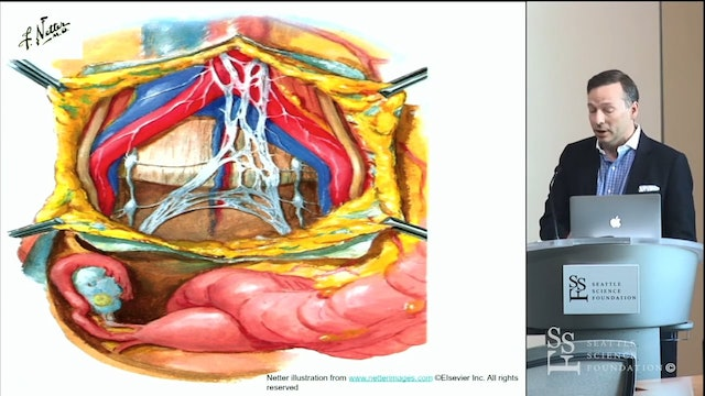 Salient Lumbar Neuroanatomy for Spinal Deformity Surgery