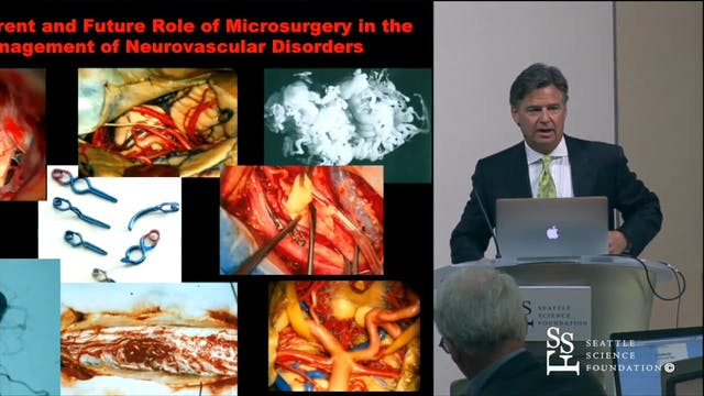The Current & Future Role of Microsur...