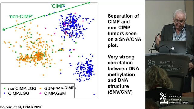 Big data analysis of glioma populations