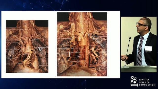 Integrated Anatomy & CT Imaging
