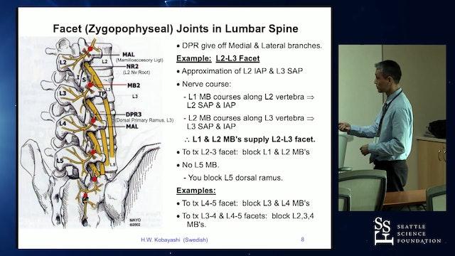Lumbar Neurotomy Techniques