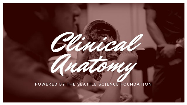 Clinical Anatomy Lecture Series