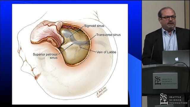 Petrosal Craniotomy Approaches
