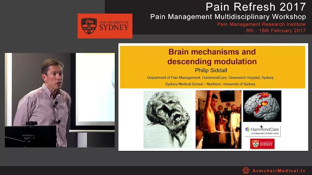 Brain mechanisms and descending modulation Professor Philip Siddall