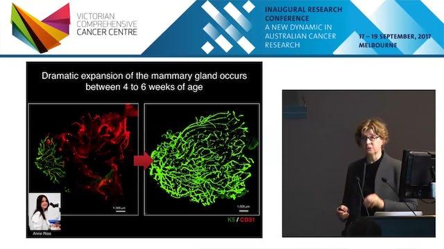 Identifying cells of origin of breast cancer - Jane Visvader