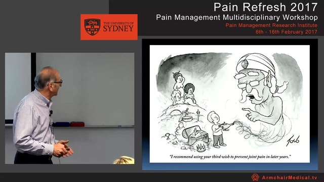 Overview of musculoskeletal pain Prof...