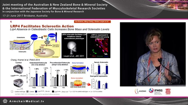 Muscle bone interactions Dr Michaela Kneissel