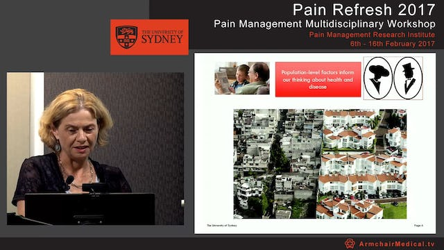 The Epidemiology of pain Professor Fiona Blyth