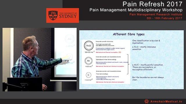 Peripheral mechanisms - pain & analgesia Dr Chris Vaughan