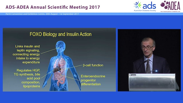 The new biology of diabetes Domenico Accili